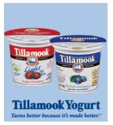 tilamook yogurt