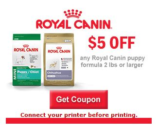 photograph about Royal Canin Printable Coupon called $5 off any A person Bag of Royal Canin Dog System 2pounds or