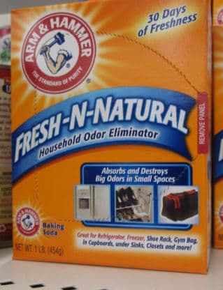 arm and hammer one pound dollar tree