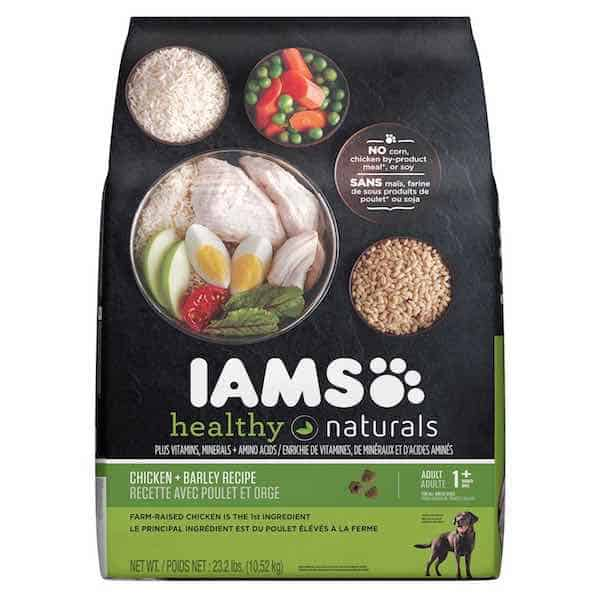 Iams cat food coupons walmart