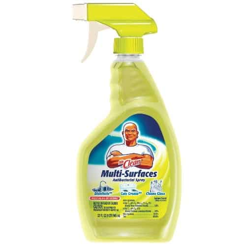 Mr. Clean All Purpose Cleaner Printable Coupon