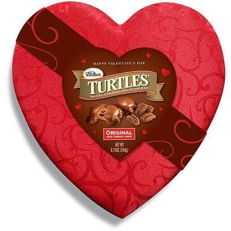 Turtles Chocolate