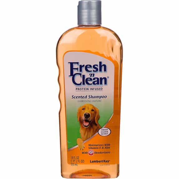 Fresh 'n Clean Shampoo Printable Coupon