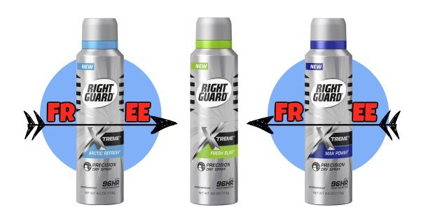 right-guard-precision-dry-spray-4-oz-bottle-image