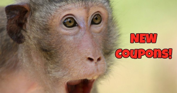 Surprised Monkey New Coupons Image