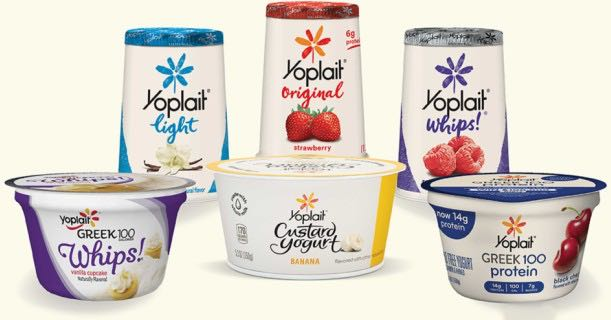 Yoplait Yogurt Products Image
